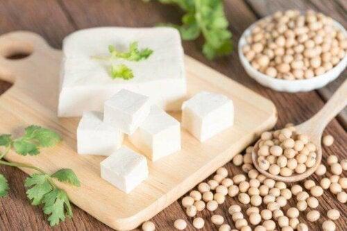 Tofu som et alternative til animalsk protein