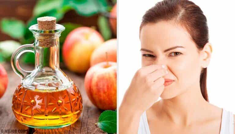 5 naturlige deodoranter for å bekjempe vond kroppslukt