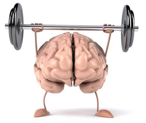 Hjerne som løfter vekter.