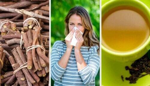 4 naturlige behandlinger for å bekjempe tilstanden rhinitt