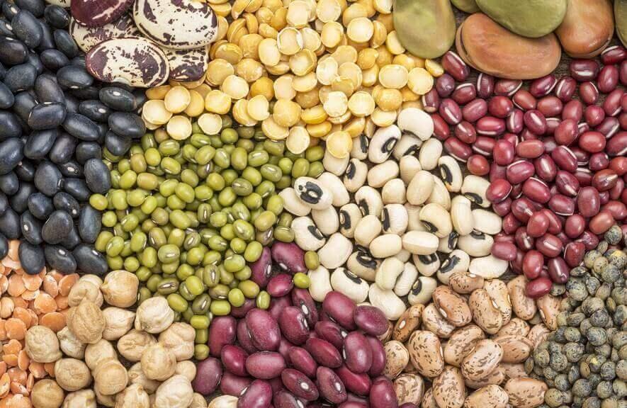 Hvilke andre næringsstoffer kan belgfrukter gi?