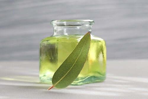 En liten flaske eukalyptusolje.