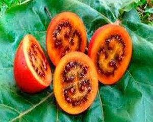 Fire eksotiske frukter og grønnsaker du sannsynligvis aldri har hørt om