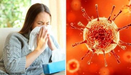 Hvorfor virus blir sterkere og mer motstandsdyktige