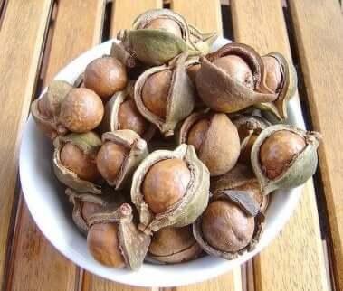 Macadamianøtter inneholder mange næringsstoffer