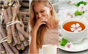 Fire naturlige midler for å behandle spiserørsbetennelse