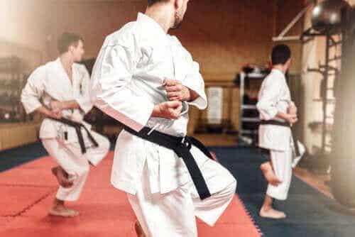 Forskjellene mellom karate og taekwondo