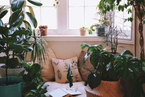 Ideer for å lage et avslappende hjørne hjemme
