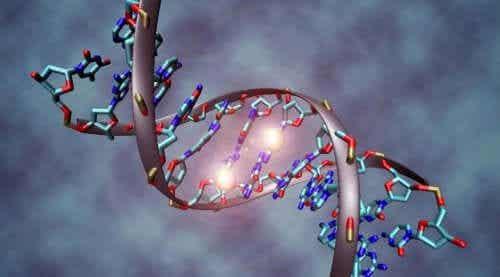 En DNA-streng