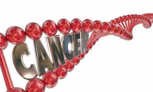 Kjenner du til det genetiske grunnlaget for kreft?