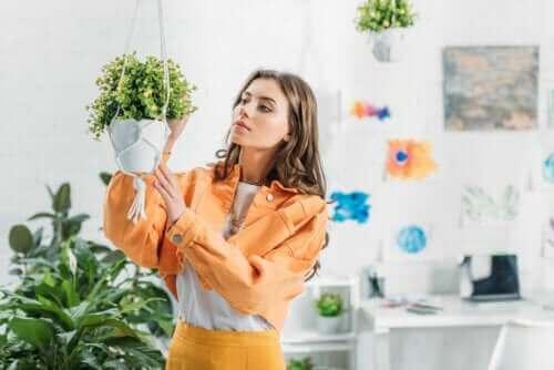 Slik kan du lage ampler til plantene dine hjemme