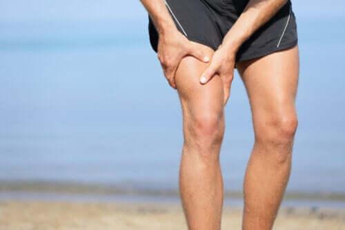 Den lengste muskelen i kroppen: Sartorius-muskelen
