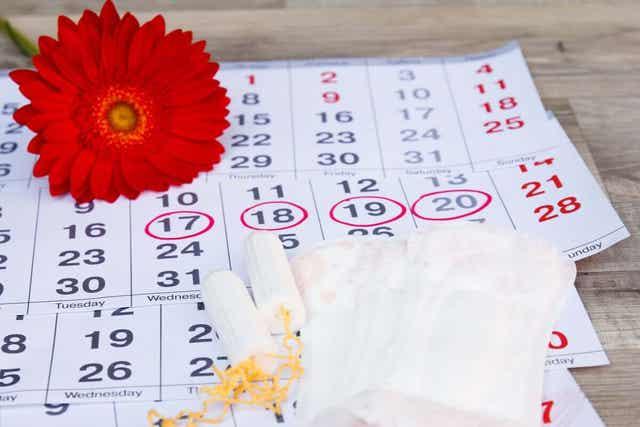 En representasjon av menstruasjonssyklusen