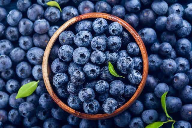 Friske blåbær i en trebolle, omgitt av flere friske blåbær