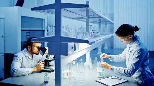 Labteknikere som analyserer en biopsi av skjoldbruskkjertelen.