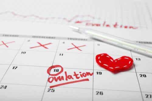 En menstruasjonskalender.