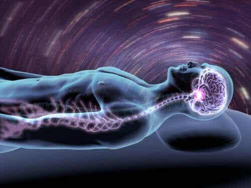 Hjernen når du sover.