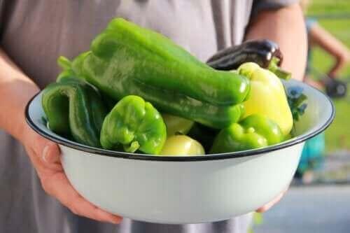 Hvordan plante paprika hjemme