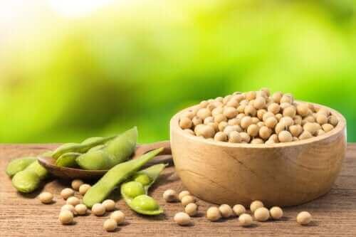 Mungbønner: Egenskaper, bruk og fordeler