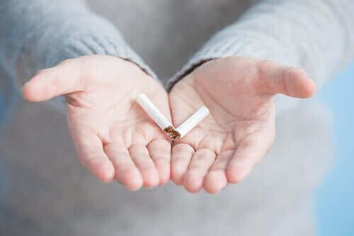 Oppdag den delte avhengigheten av cannabis og tobakk