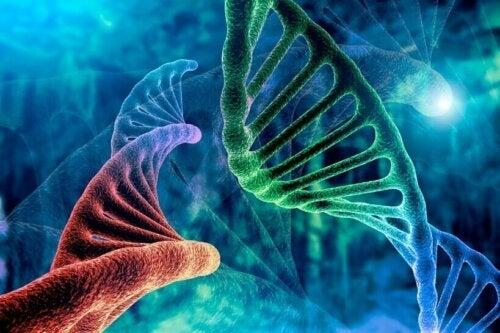 Bruk, risiko og fordeler med biologisk terapi