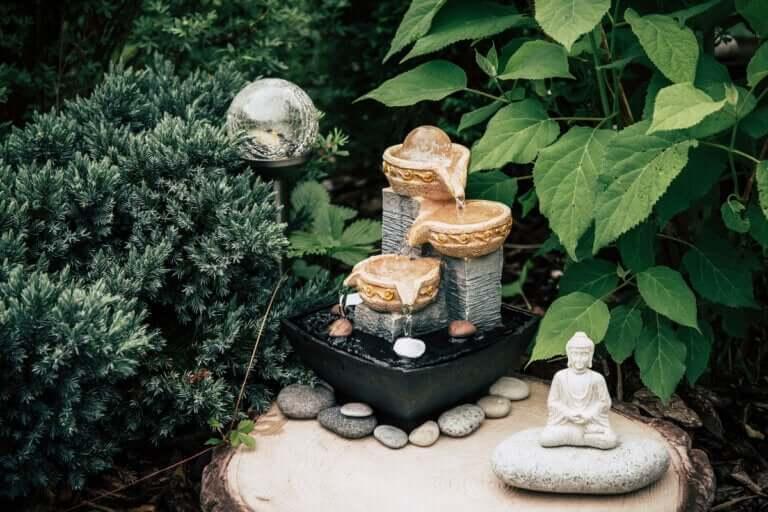 Zen-hager: Fordelene og hvordan du lager en