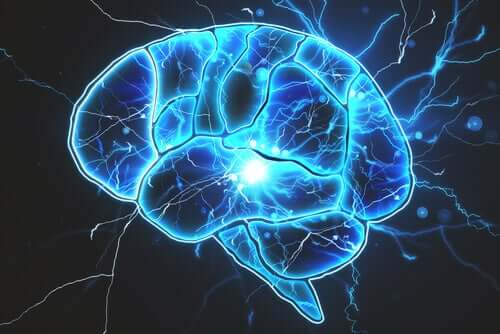 Er det bakterier i hjernen?